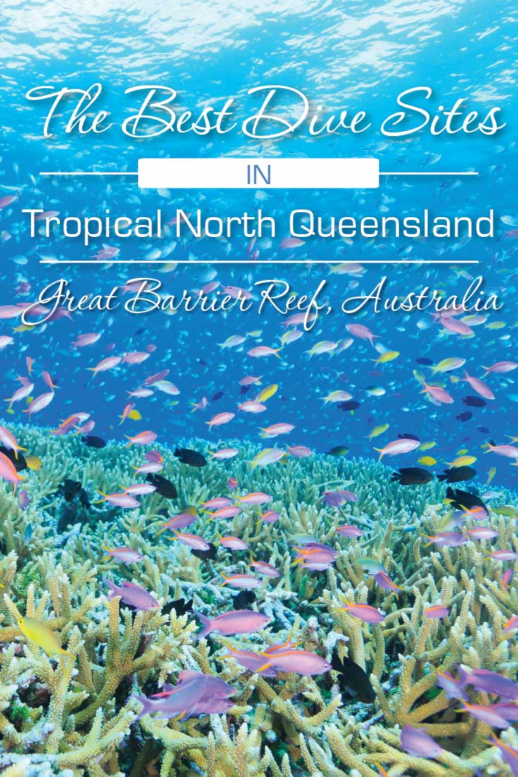 best-dive-sites-north-queensland